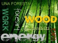 forestalia