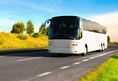 Vendite di camion e bus: solo Cipro peggio dell'Italia