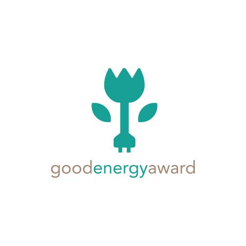 Good Energy Award 2013
